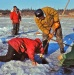 Ambler-ice fishing  9.70_0001