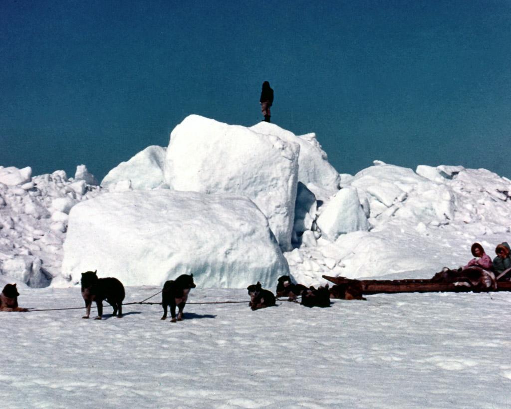 103-Dog-team-travel-on-sea-ice