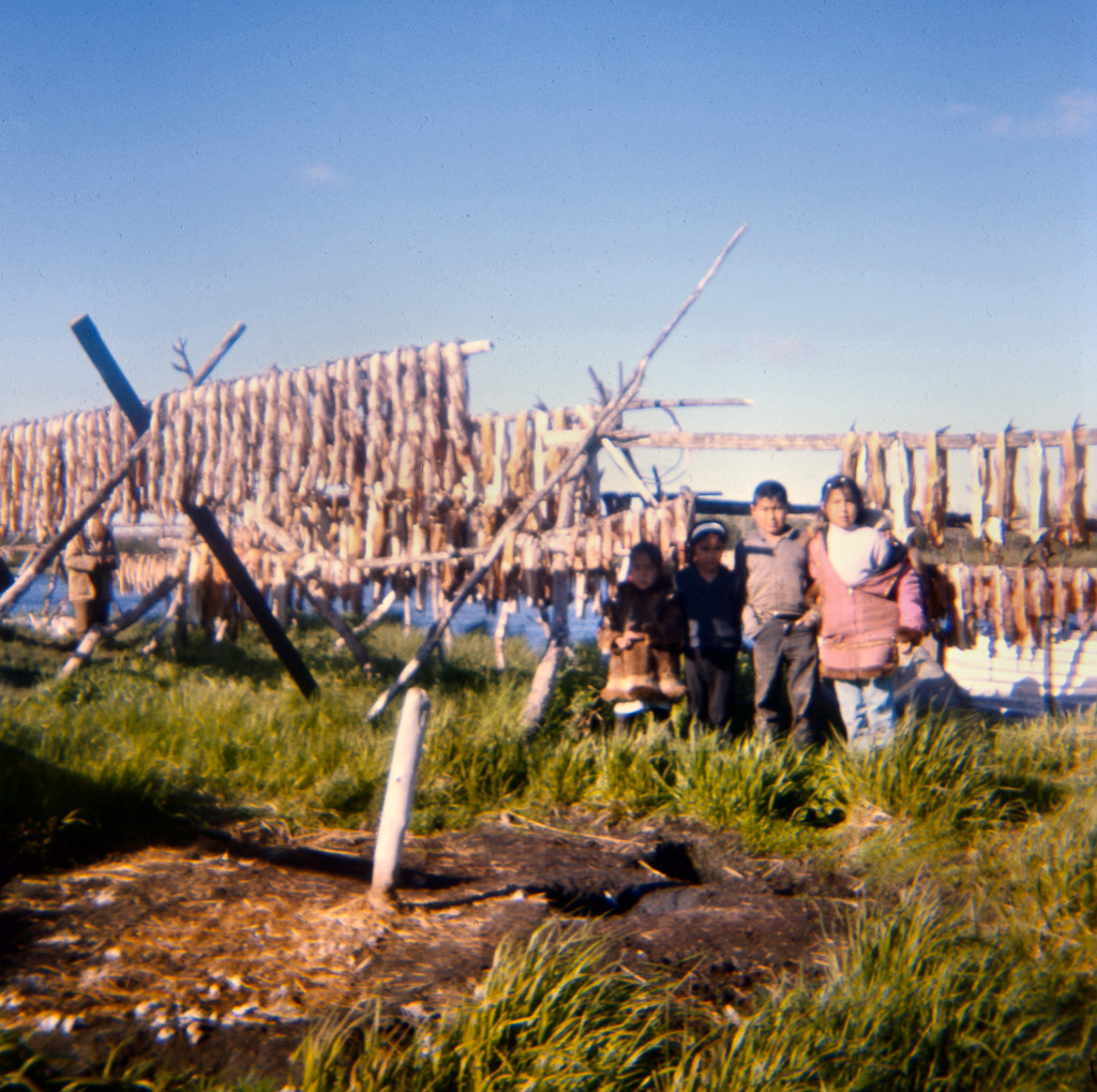 133-Fish-drying-July