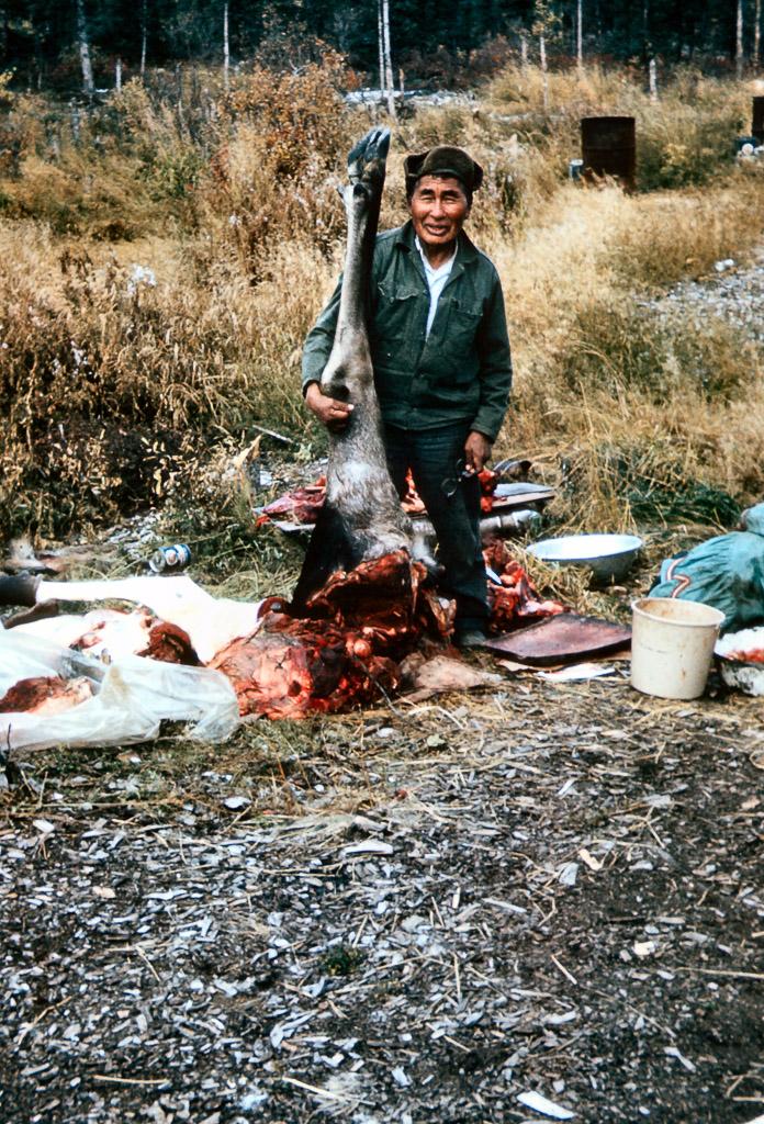 1967 Jacob Johnson butchering a moose.