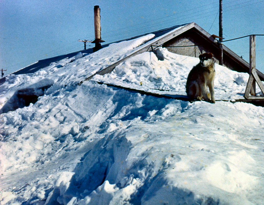 26-A-winter-house-in-Kozebue-not-ours