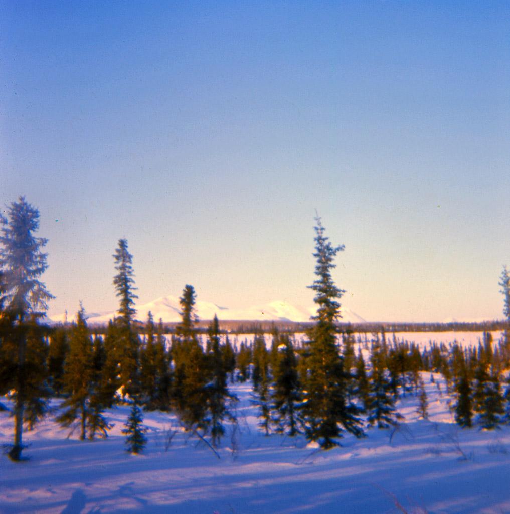 55-a-winter-scene