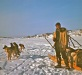 Kobuk slideshow_0023, Keith Jones with dog team