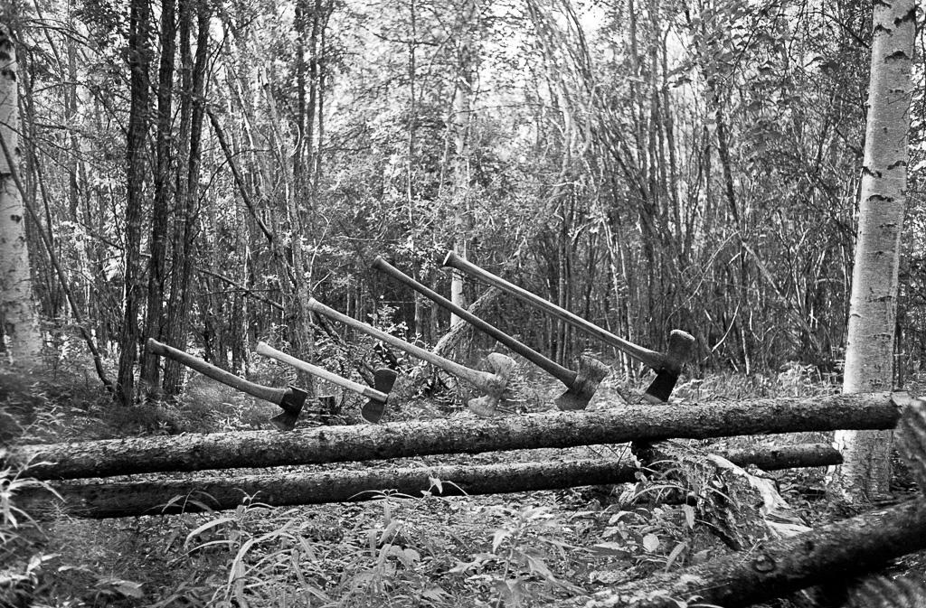 1978 Axes in a log