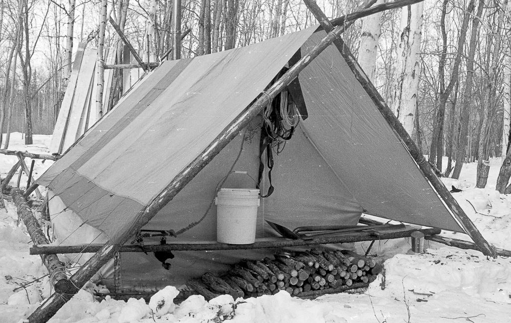 Olivers-tent-with-firewood-stacked-behind-along-with-dog-harnesses